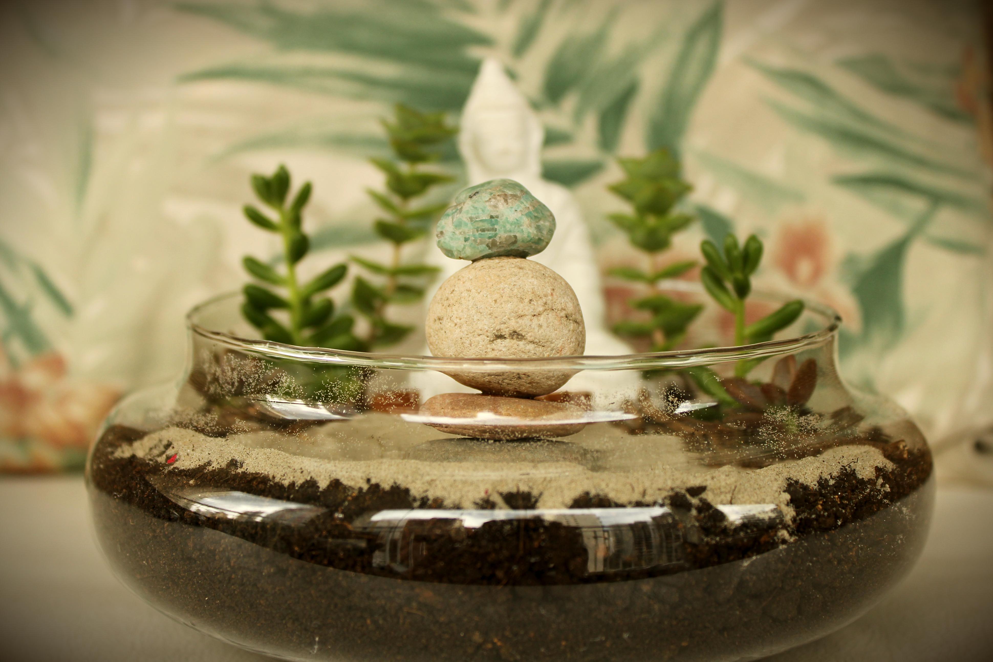 mini jardim de vidro:Buda Meditation Garden