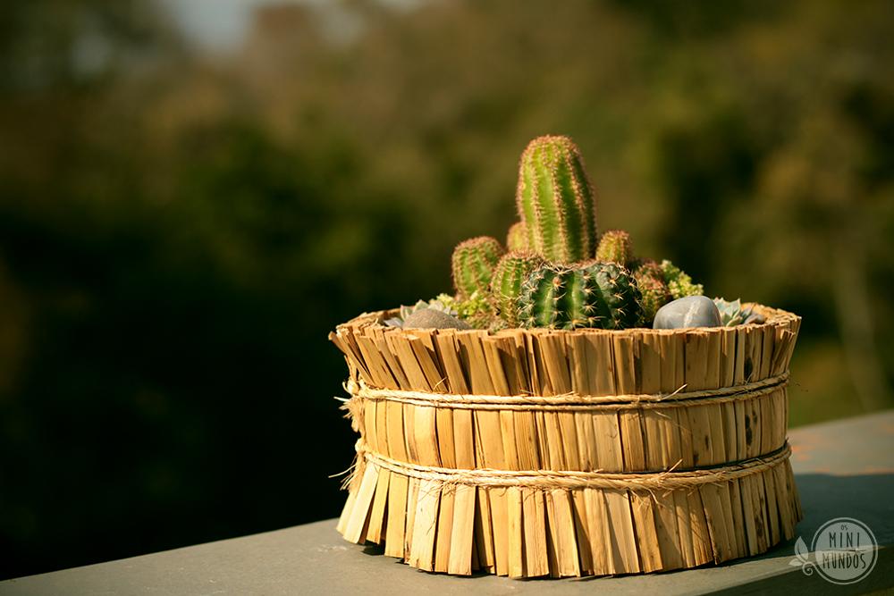 mini jardim de cactus:Mini jardim em vaso de palha com cactos e plantas suculentas.