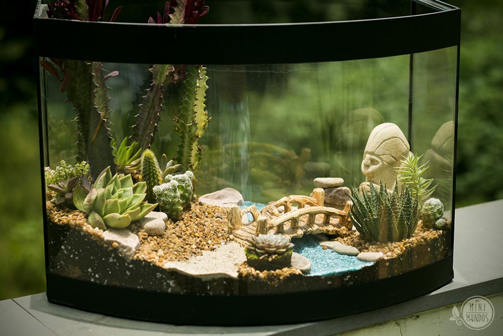 mini jardim terrario:Aquário Suculento